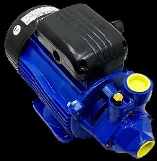 Pompes périphériques LOWARA type PM21/A