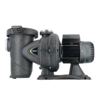 h2o 116909 pompe de filtration dab euroswim 1 cv 18 m3 h monophase mini removebg preview