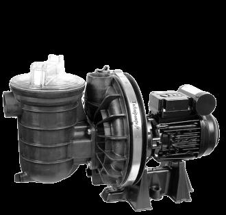 Pompes de piscine STA-RITE série 5P2 - Eau douce